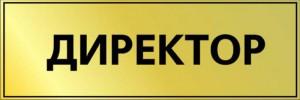 tablichka-direktora-na-dver7